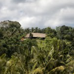 Bali Asli nestled in the trees